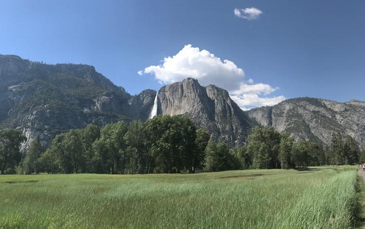 Road Trip in Cali –Yosemite